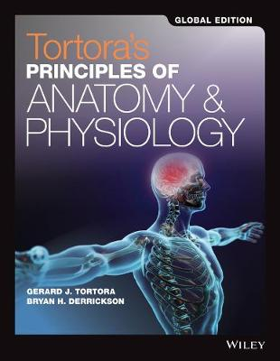 Principles of Anatomy and Physiology Set Global Edition by Gerard J. Tortora