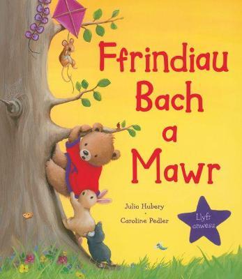 Ffrindiau Bach a Mawr book