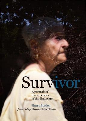 Survivor by Harry Borden