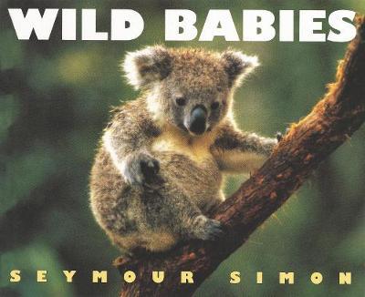 Wild Babies by Seymour Simon