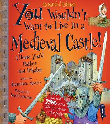 You Wouldn't Want To Be In A Medieval Castle! by Jacqueline Morley