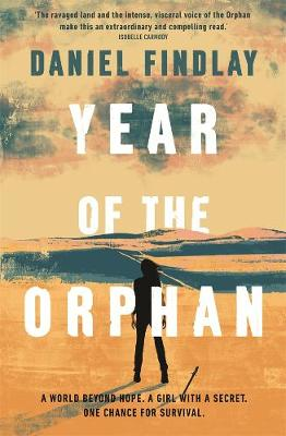 Year of the Orphan book