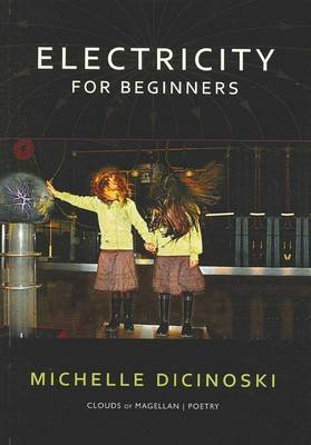 Electricity for Beginners by Michelle Dicinoski