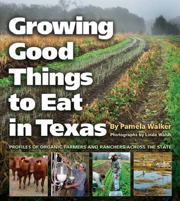 Growing Good Things to Eat in Texas by Linda Walsh
