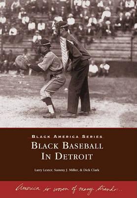 Black Baseball in Detroit by Larry Lester