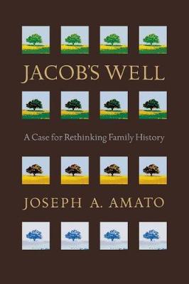 Jacob's Well by Joseph Amato