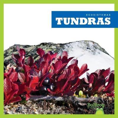 Tundras (Tundras) by Nadia Higgins