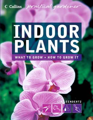 Indoor Plants by Lia Leendertz