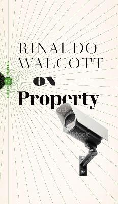 On Property: Policing, Prisons, and the Call for Abolition by Rinaldo Walcott