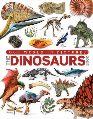 Dinosaurs Book by DK