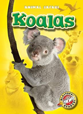 Koalas by Kari Schuetz