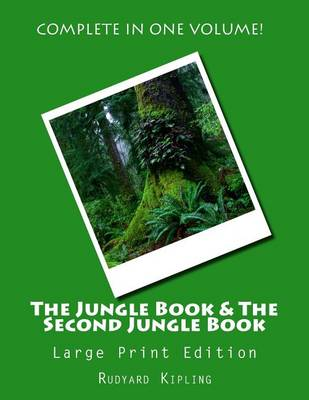 The Jungle Book & the Second Jungle Book - Large Print Edition by Rudyard Kipling