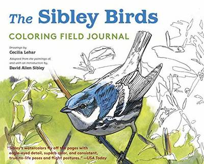 Sibley Birds Coloring Book by David Allen Sibley