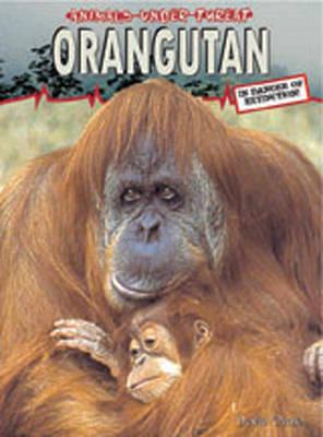 Animals Under Threat: Orangutan Hardback by David Orme