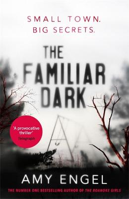 The Familiar Dark: The spellbinding book club thriller of 2020 that will blow you away by Amy Engel