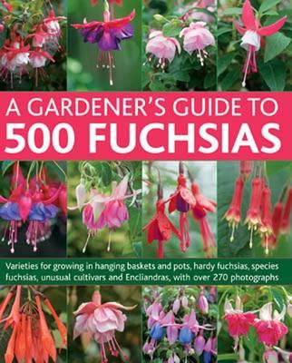 Gardener's Guide to 500 Fuchsias by John Nicholass