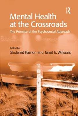 Mental Health at the Crossroads by Janet E. Williams