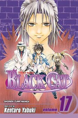 Black Cat, Vol. 17 by Kentaro Yabuki