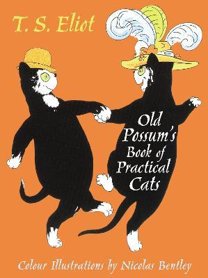 Illustrated Old Possum book