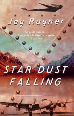 Star Dust Falling by Jay Rayner