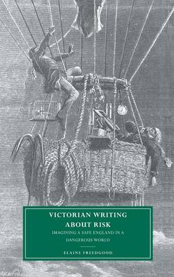 Victorian Writing about Risk by Elaine Freedgood
