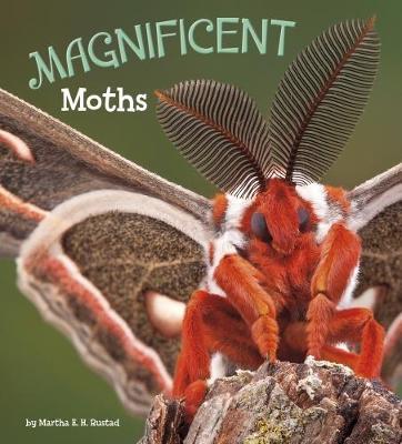 Magnificent Moths by Martha E. H. Rustad