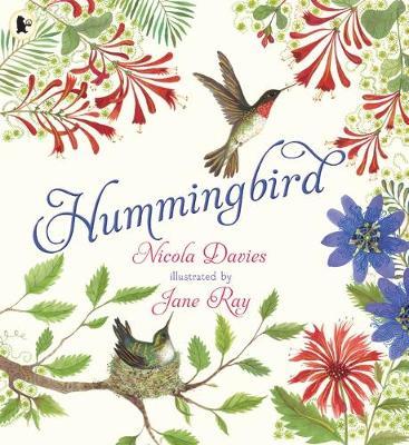 Hummingbird by Nicola Davies