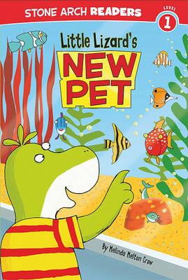Little Lizard's New Pet by Melinda Melton Crow