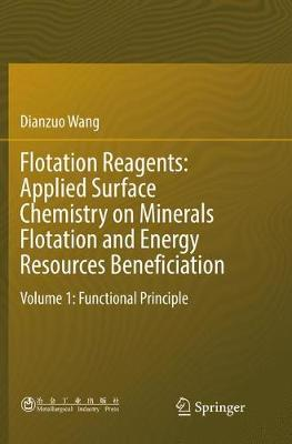 Flotation Reagents: Applied Surface Chemistry on Minerals Flotation and Energy Resources Beneficiation: Volume 1: Functional Principle by Dianzuo Wang