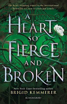 A Heart So Fierce and Broken book