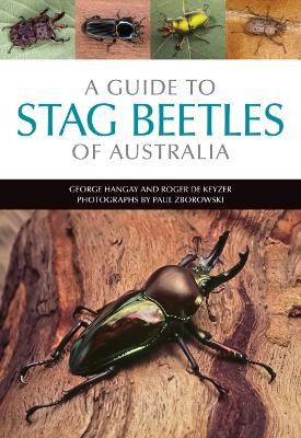 A Guide to Stag Beetles of Australia by George Hangay