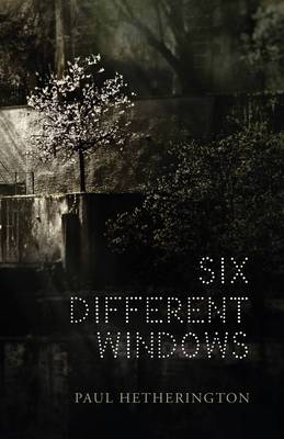 Six Different Windows book