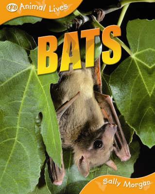 Bats by Sally Morgan