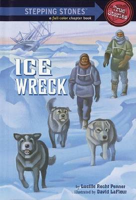 Rdread:Ice Wreck L4 by Lucille Recht Penner