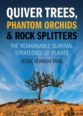 Quiver Trees, Phantom Orchids And Rock Splitters by Jesse Vernon Trail