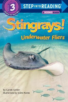 Stingrays! Underwater Fliers book