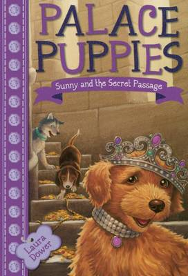 Sunny and the Secret Passage by Laura Dower