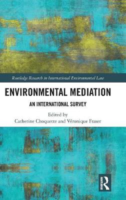 Environmental Mediation by Catherine Choquette