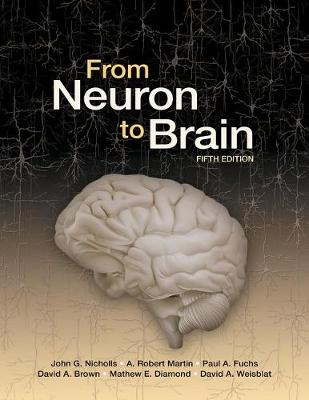 From Neuron to Brain by John G. Nicholls