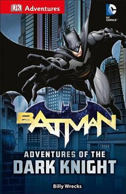 DK Adventures: DC Comics: Batman: Adventures of the Dark Knight book