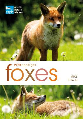 RSPB Spotlight: Foxes by Mike Unwin