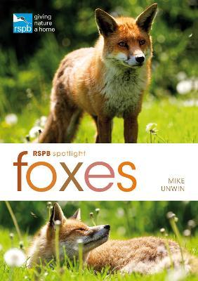 RSPB Spotlight: Foxes by Mike Unwin
