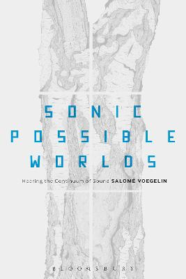Sonic Possible Worlds by Salome Voegelin