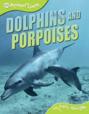 Dolphins and Porpoises by Sally Morgan