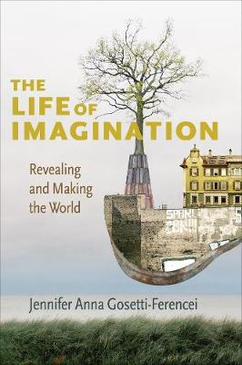 The Life of Imagination: Revealing and Making the World book