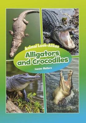 Alligators and Crocodiles by Joanne Mattern
