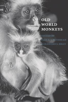 Old World Monkeys book
