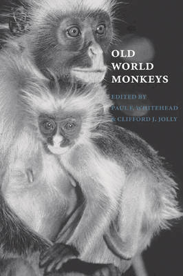Old World Monkeys book