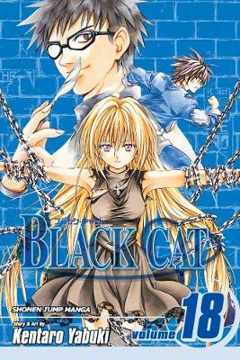 Black Cat, Vol. 18 by Kentaro Yabuki