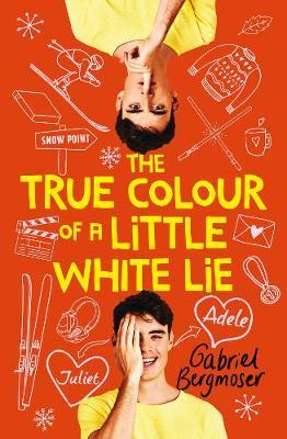 The True Colour of a Little White Lie book